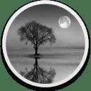 Reflect Studio 2.9