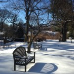 Winter Gardens of Macculloch Hall Historical Museum, Morristown, New Jersey
