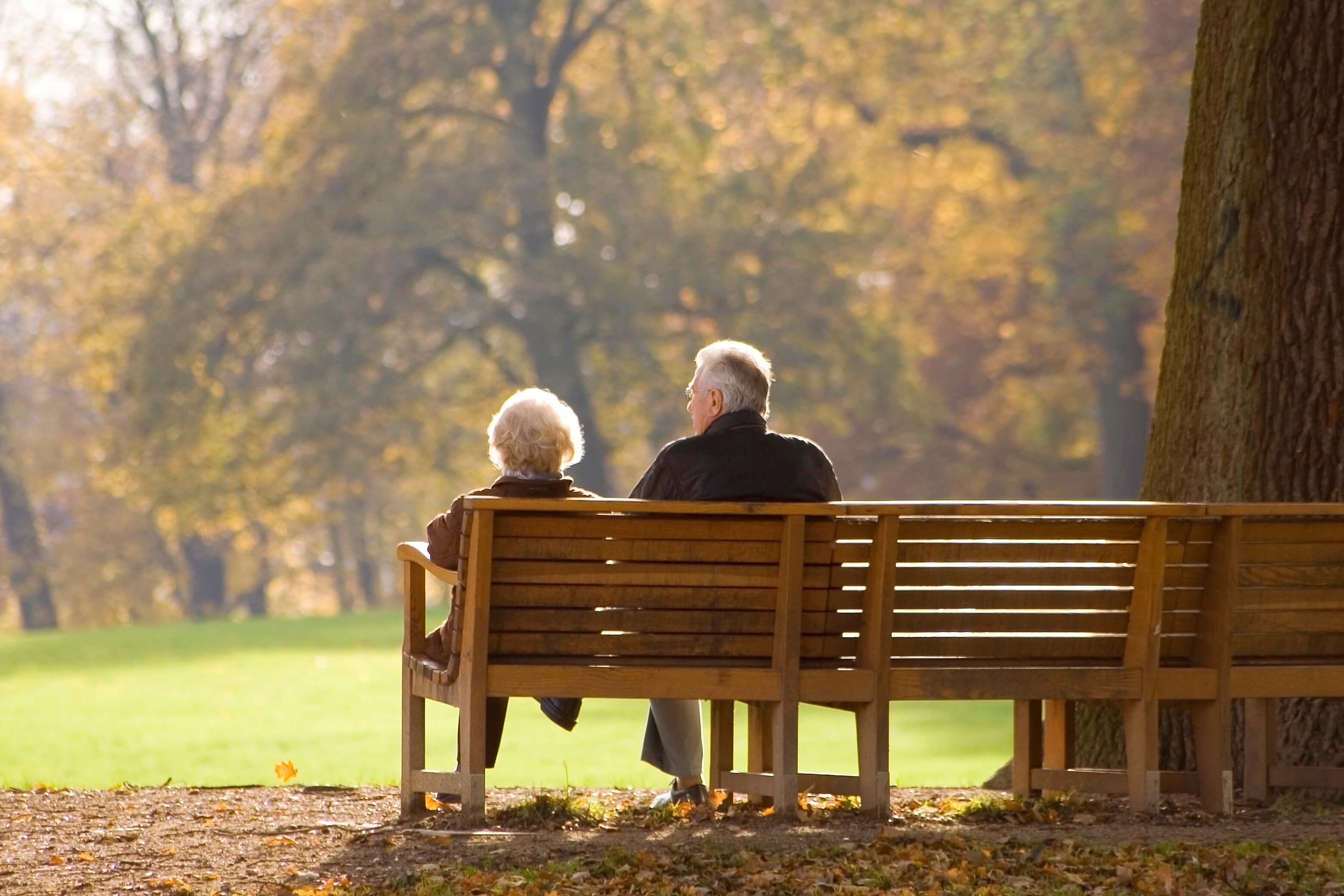 Image result for elderly couple park