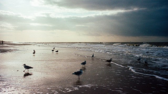 Sylt: Evening on the Hauptstrand. Leica M3 with 35mm Summicron at f/5.6 and 1000s. Kodak Portra 160.