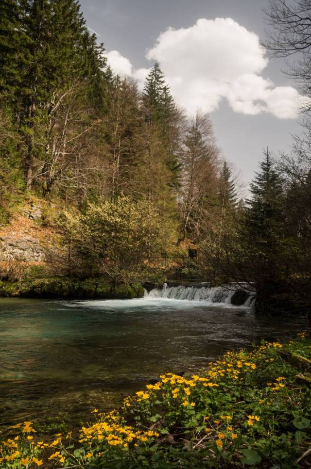 The Black River in the meadow and the waterfall