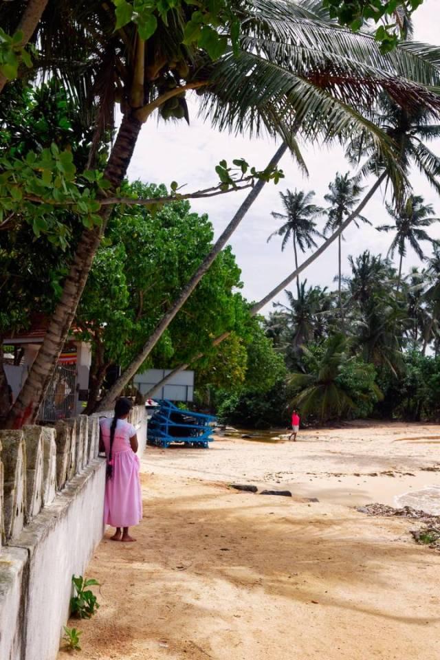 Under the palms at Unawatuna