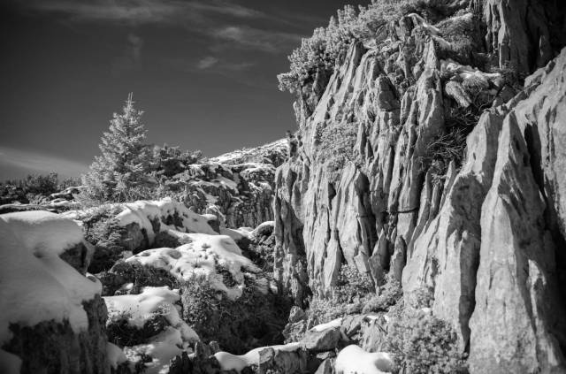 Gottesackerplateau, Kleinwalsertal. Leica M10-M with 35mm Summilux 1/125s f/2.8 ISO 3200 Infrared Filter 715