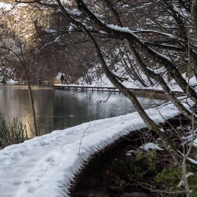 The boardwalk, Kaluderovac Lake