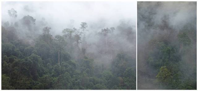The road between Nechiphu and Sessa is perennially under cloud cover