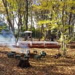 『北本 春の森めぐり2017』を開催します