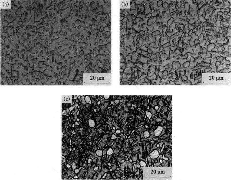 The effect of the cooling method on the microstructure of TC21 alloy