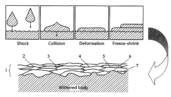 Schematic diagram of the coating formation process