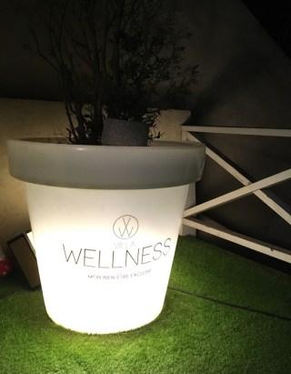 Expo David d'Alessandro - Villa Wellness