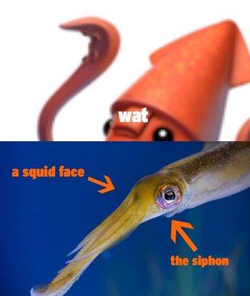 Il calamaro di Apple è sbagliato, noto acquario invita alla correzione