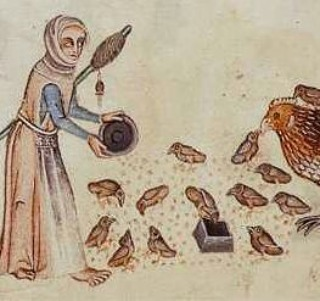 Woman early 1300's
