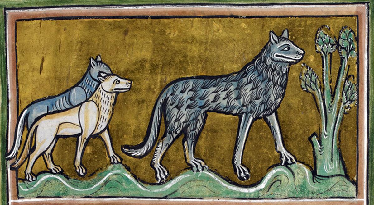 Writing Werewolves: The Alpha, Beta, Omega Problem • Mackenzie Kincaid