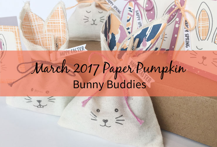March 2017 Paper Pumpkin - Bunny Buddies – Check out a bunch of cute bunny projects made using the Bunny Buddies Paper Pumpkin kit. | #mackenziemakes #makewithme #stampinup | www.mackenziemakes.com