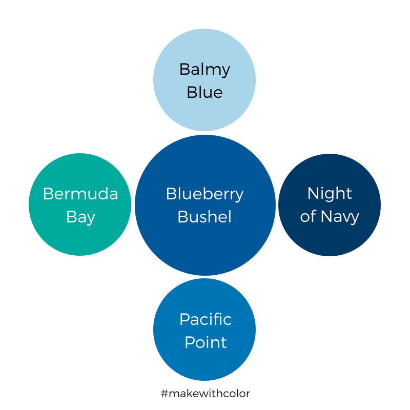 Color Comparison Blueberry Bushel