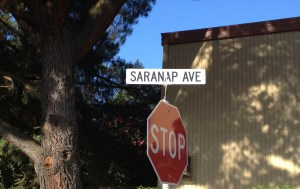 saranap ave street sign