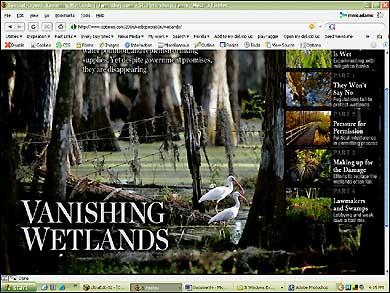 Vanishing Wetlands (bottom)
