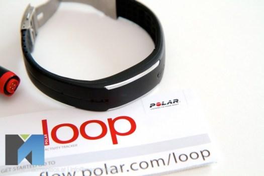 polar-loop 001