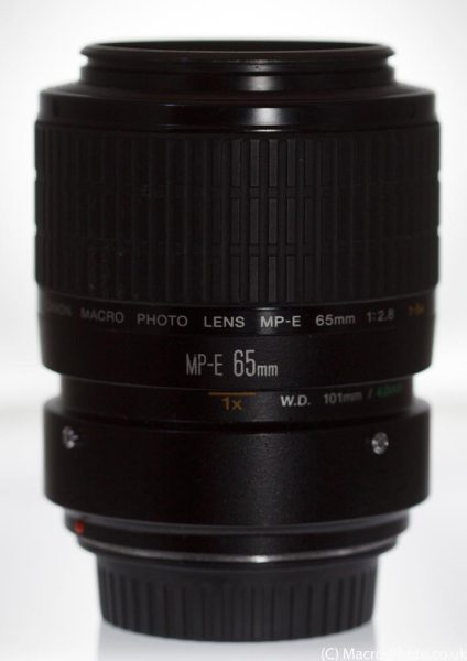 Canon MPE-65mm at 1x Magnification