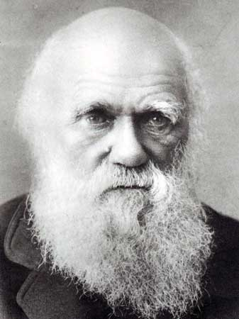 Image result for charles darwin last picture