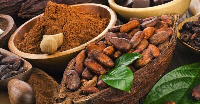Risultati immagini per cacao grezzo