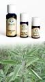 Salvia Sclarea - Olio Essenziale 5 ml (2600-05)
