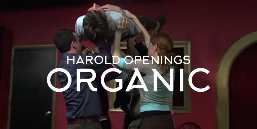 Harold Group Opening Organic