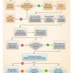Web Development life cycle – Process flow diagram