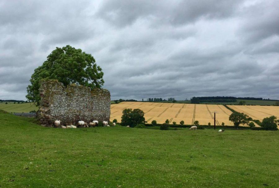 Day 2 Cessford Castle