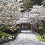 Walking on Shikoku Island, Gokurakuji temple