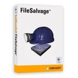FileSalvage