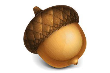 Acorn mac