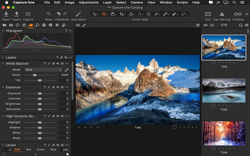 Capture One 21 Pro 14.1.1.24 With Crack Free Download