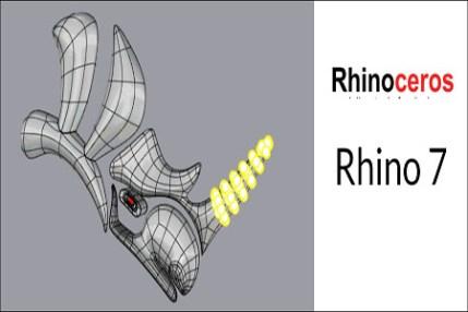 Rhinoceros 7