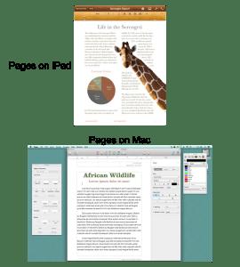 pages comparison