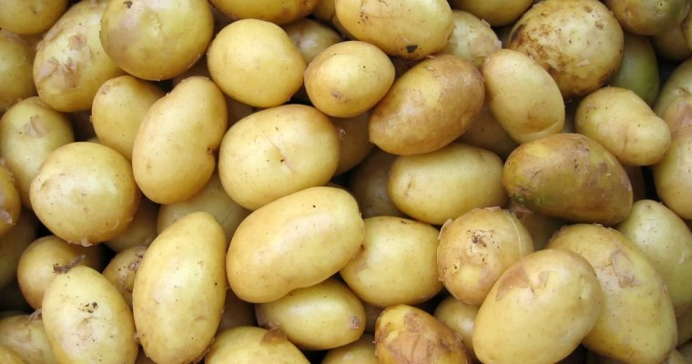 Are Potatoes Healthy For You?