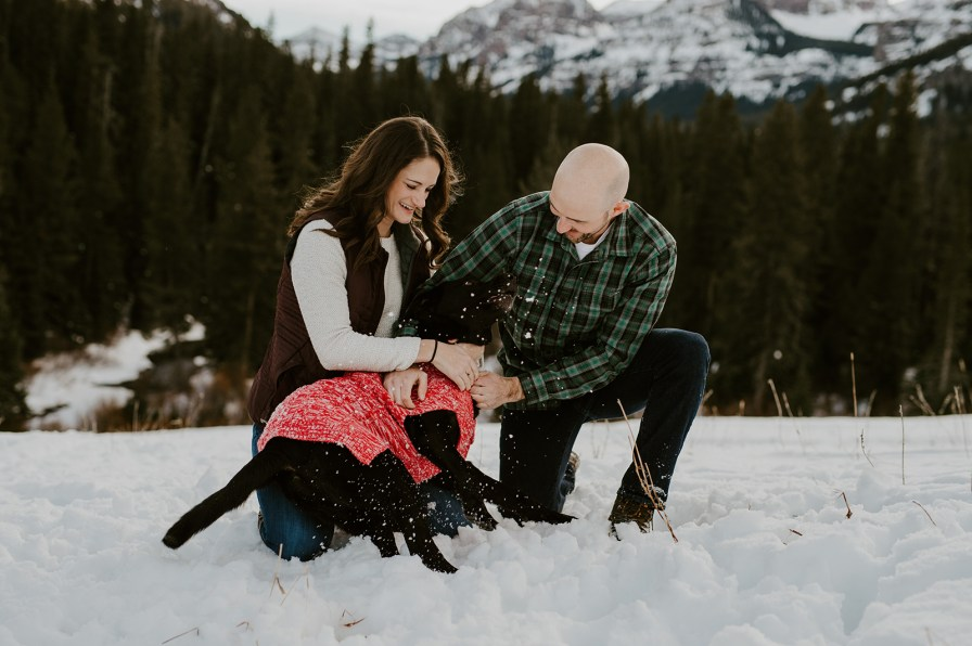 dog at engagement session