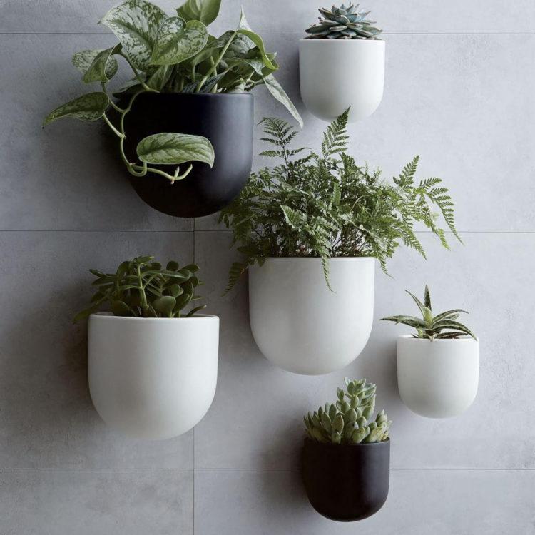 Large Hanging Plant Pots