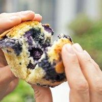 Locker fluffige Blaubeer-Muffins