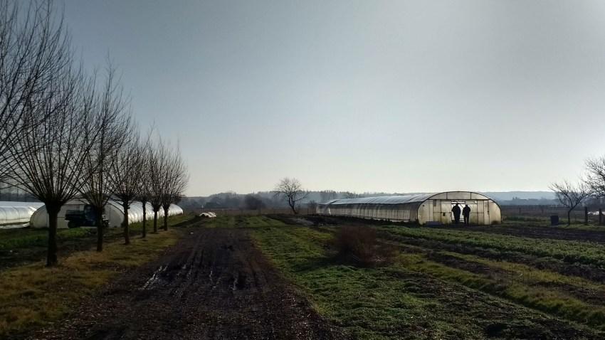 FarmErasmus:Η Greenpeace στηρίζει τη βιώσιμη γεωργία