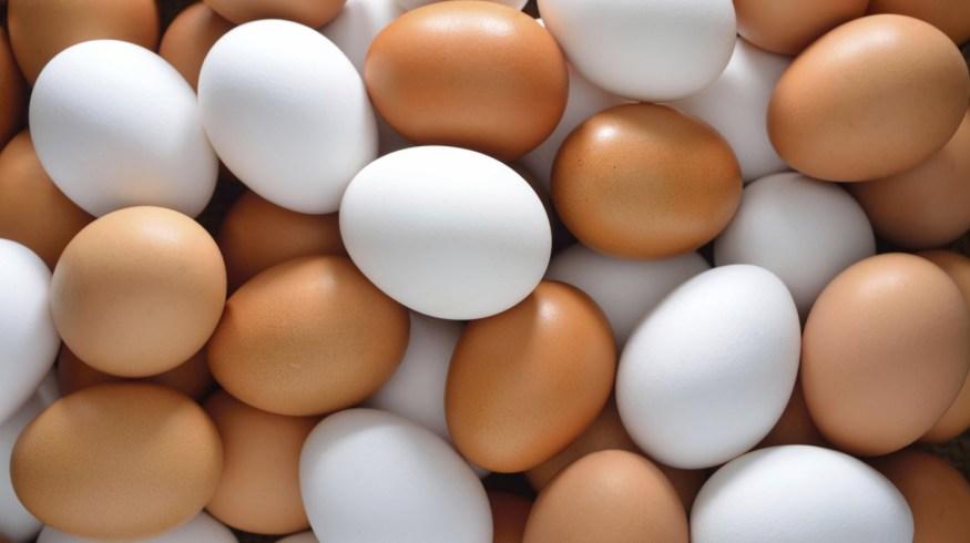 Λευκά ή καφέ αυγά; Και ποια σημασία έχει το χρώμα του κρόκου;