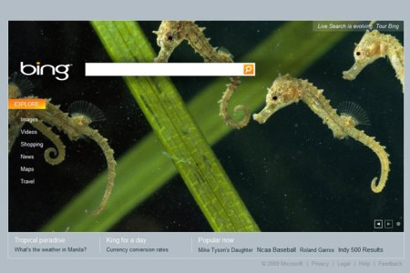 bing_homepage_original