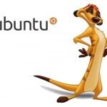 Ubuntu 10.10 Maverik Meerkat Disponible