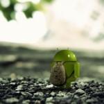 Disponible Código fuente para Android 4.0 y el SO ya supera el 50% de cuota de mercado