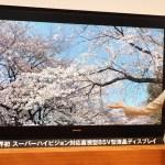 CES2012: Sharp revela televisor UHDTV con resolución de 7680×4320 píxeles