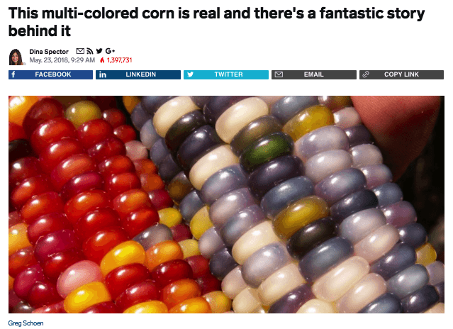 Native advertising example in Business Insider about Glass Gem Corn