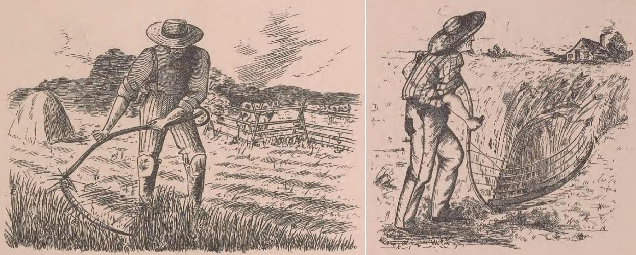 scythe illustrations