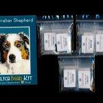 Australian Shepherd Dog Small Panel Peyote Bead Pattern PDF or KIT DIY-Maddiethekat Designs