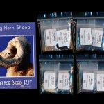 Big Horn Sheep Larger Panel Peyote Bead Pattern PDF or KIT DIY-Maddiethekat Designs