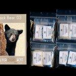 Black Bear 03 Larger Panel Peyote Bead Pattern PDF or KIT DIY-Maddiethekat Designs