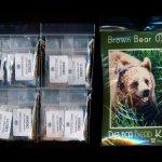 brown bear 02 larger panel peyote seed bead pattern pdf or kit diy maddiethekat designs 2